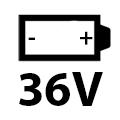 36 Volt Li Ion